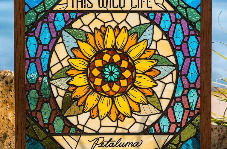 This Wild Life, Petaluma